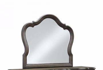 Picture of PARLIAMENT MIRROR