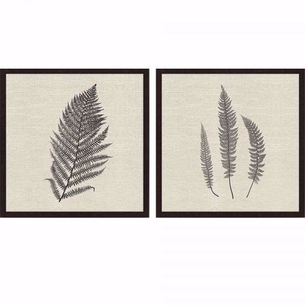 Picture of MODERN FERNS II (SET OF 2)