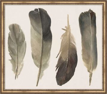 Picture of MUTED FEATHERS 1