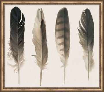 Picture of MUTED FEATHERS 2