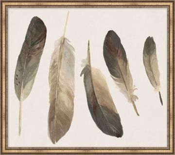 Picture of MUTED FEATHERS 4