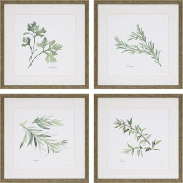 Picture of HERB PICTURE SET