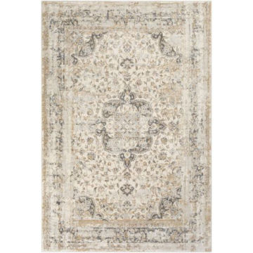 Picture of TAUPE DRYDEN RUG