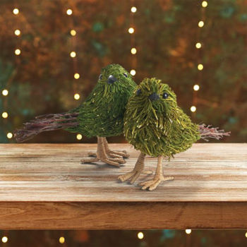Picture of MOSS & TWIG BIRD SET