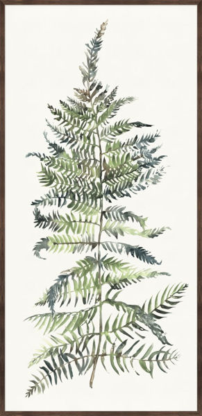 Picture of GRAND FERN I
