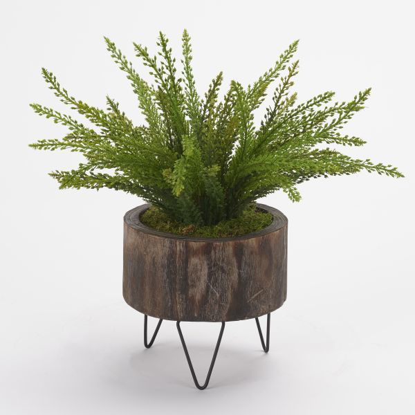 Picture of HEATHER FERN IN WOOD PLANTER