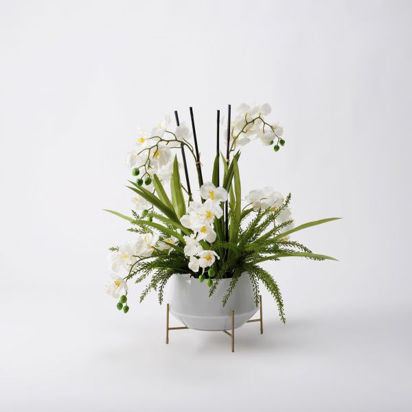 Picture of WHITE VANDA ORCHIDS IN GLASS